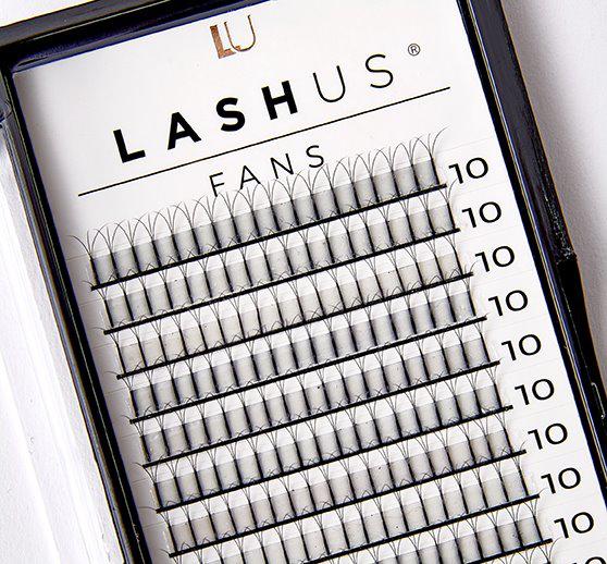 Lashus Fans