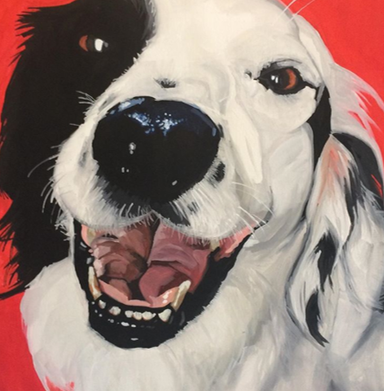 Dog 1 Lucie Wake